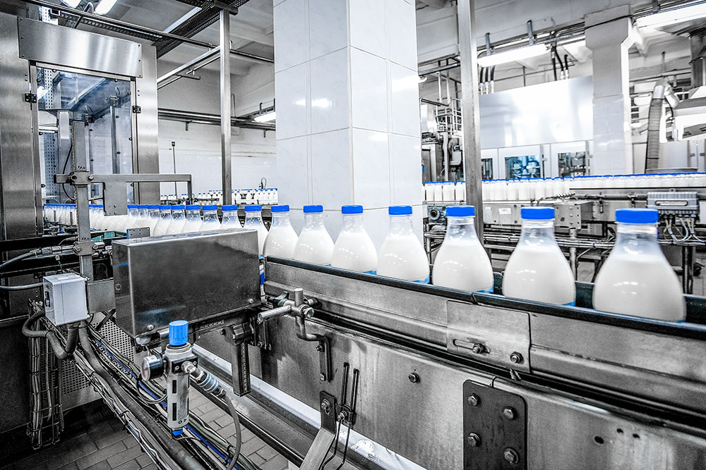 Dairy filling line operational study (UK)